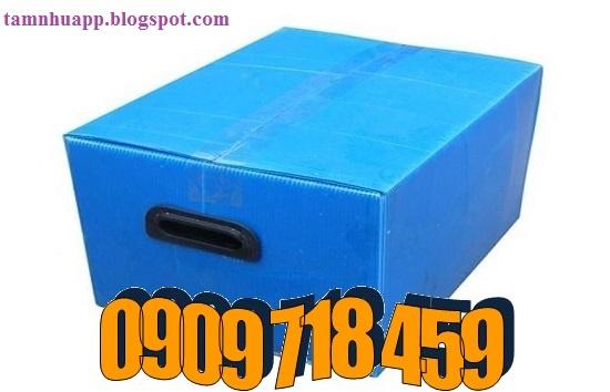 thung-nhua-pp-carton (2)